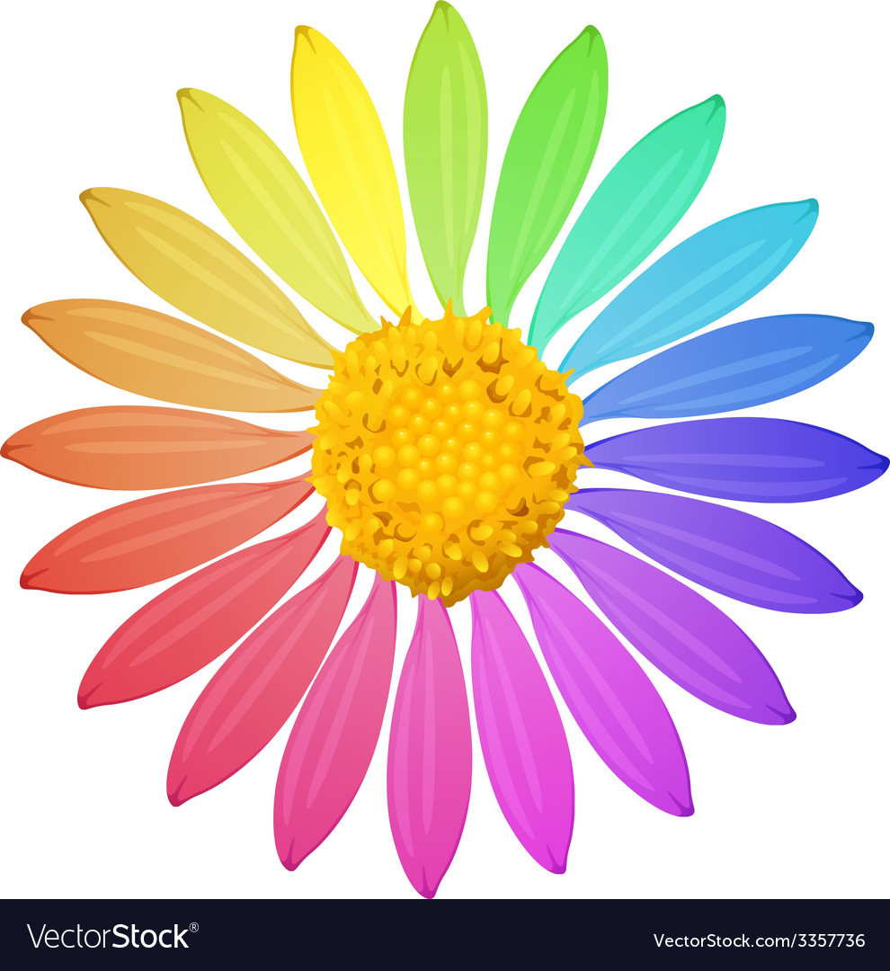 A rainbow colored flower vector | Price: 1 Credit (USD $1)