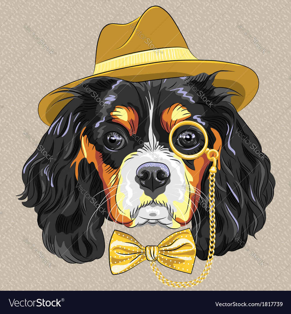 Hipster dog breed king charles spaniel vector | Price: 1 Credit (USD $1)