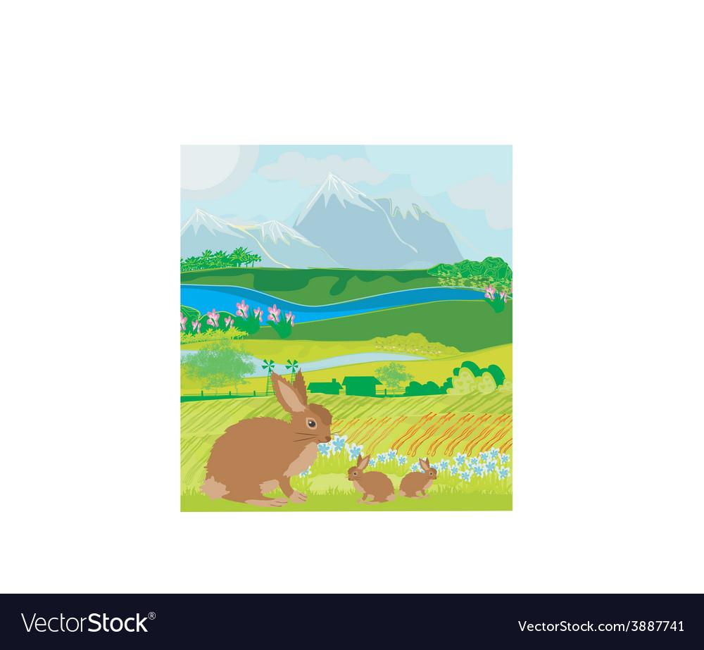 Bunnies in green meadow vector | Price: 1 Credit (USD $1)