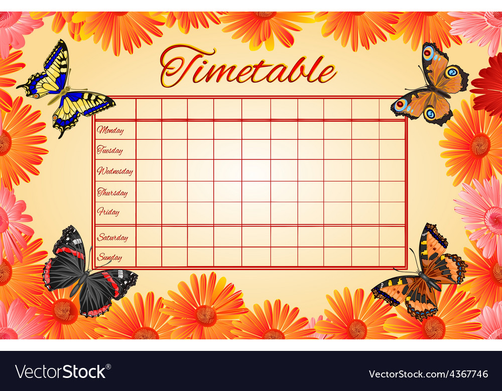 Timetable gerbera and butterflies school timetable vector | Price: 1 Credit (USD $1)