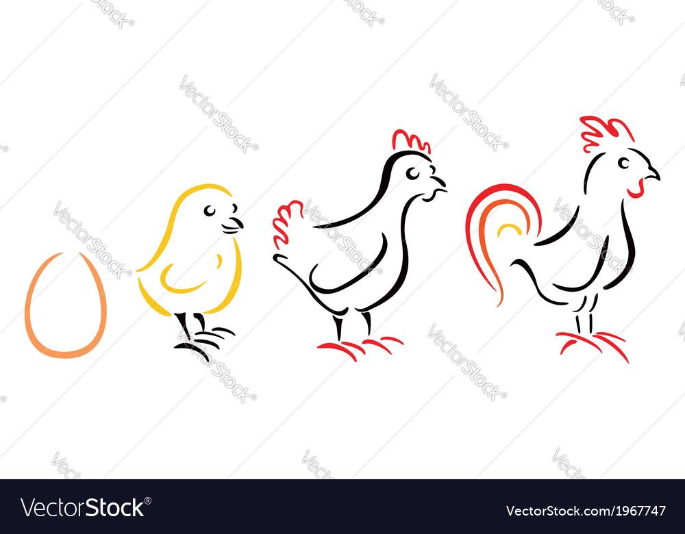 Chicken farm vector | Price: 1 Credit (USD $1)