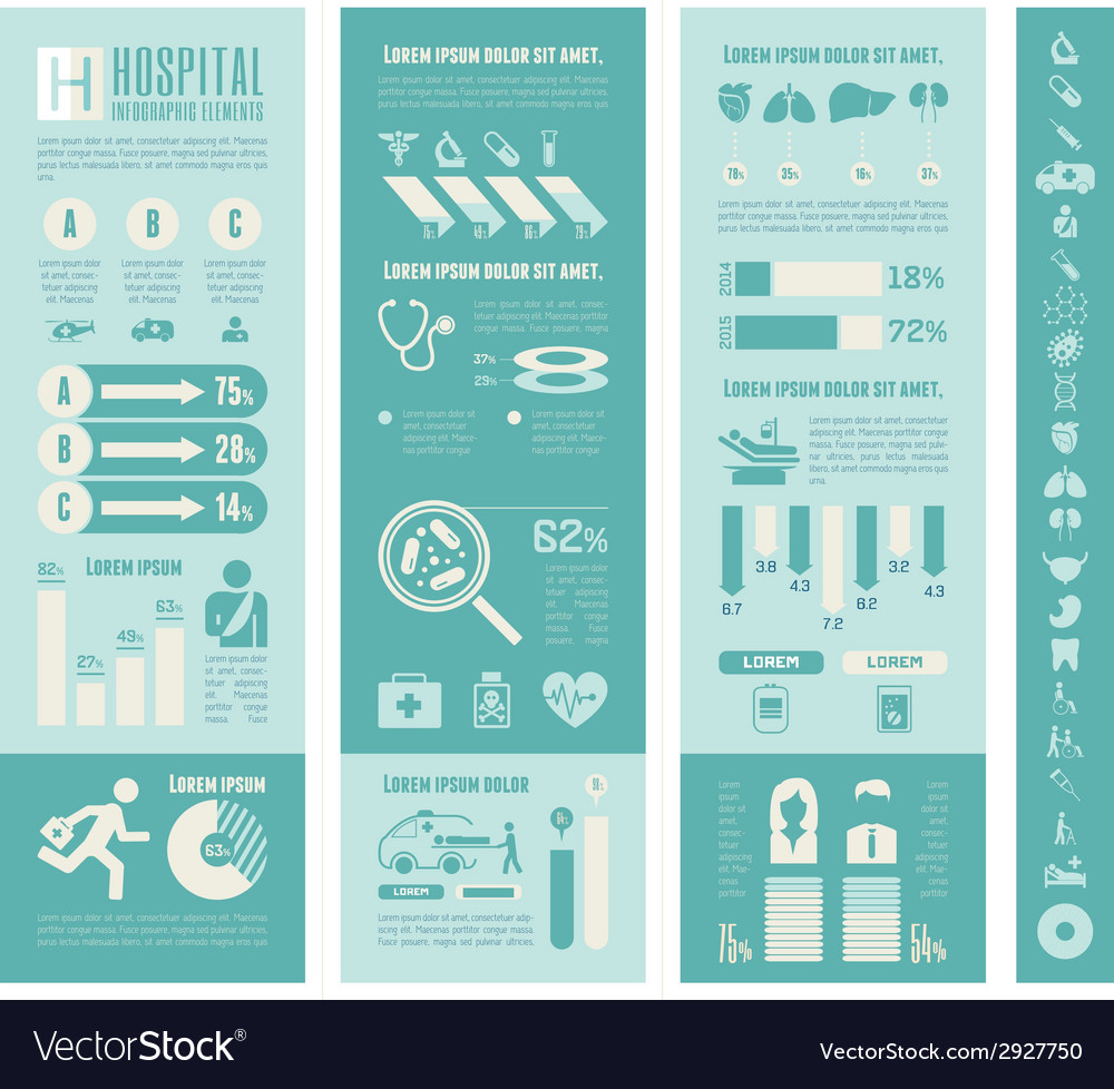 Maternity infographic template vector | Price: 1 Credit (USD $1)