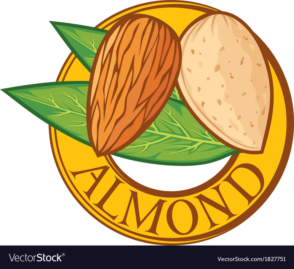 Almond with leaves label vector | Price: 1 Credit (USD $1)