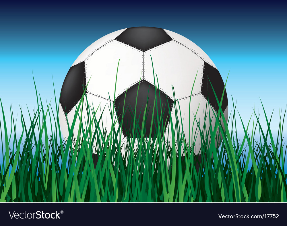 Soccer ball on grass vector | Price: 3 Credit (USD $3)