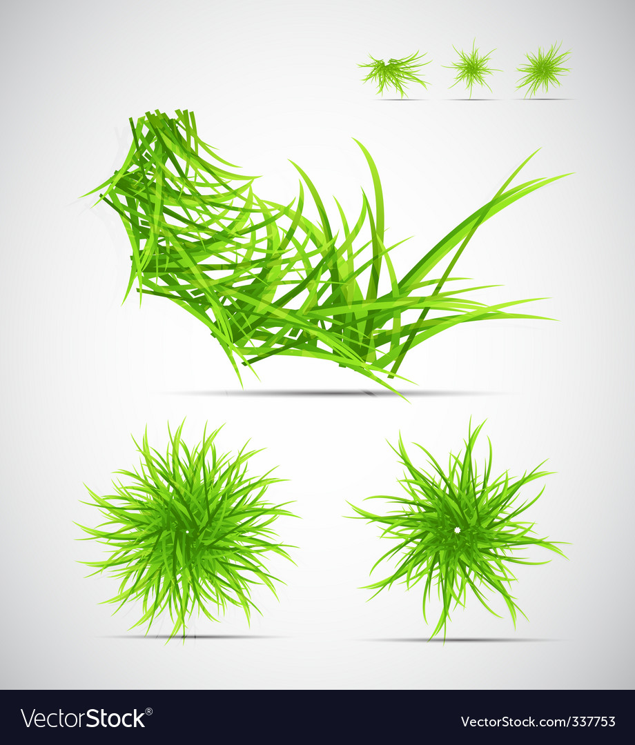 Natural themed elements vector | Price: 1 Credit (USD $1)