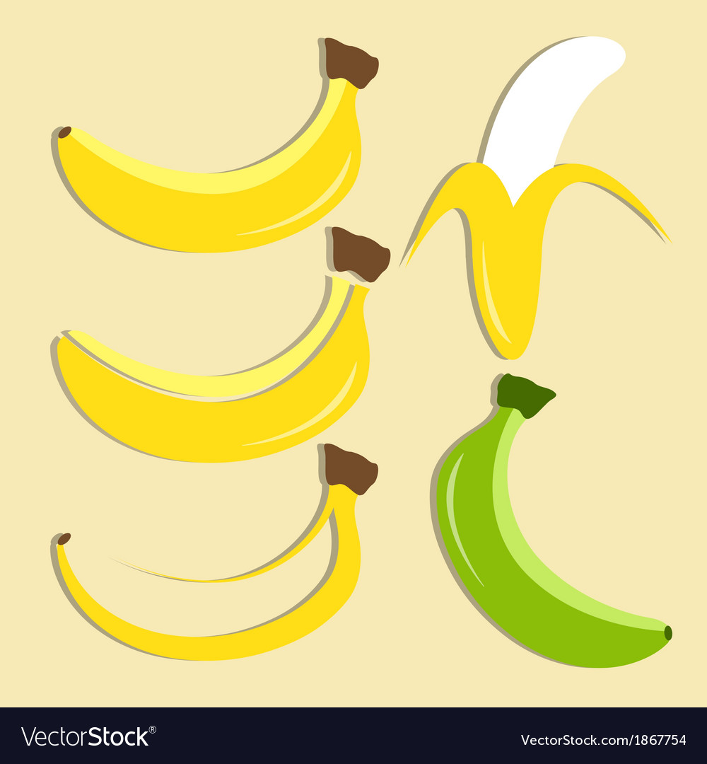 Set of banana icon vector | Price: 1 Credit (USD $1)
