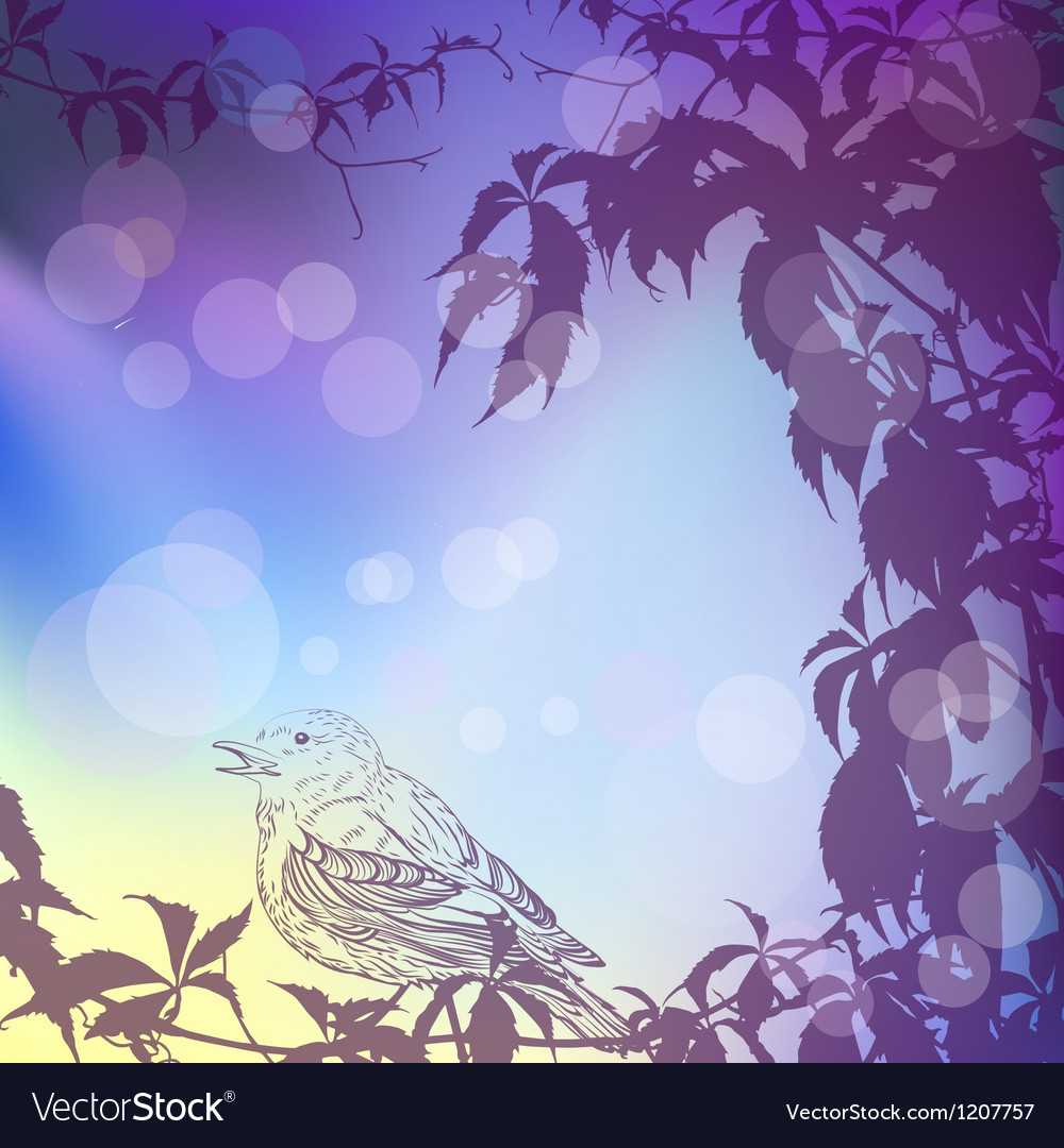 Twilight background with ivy and a bird vector | Price: 1 Credit (USD $1)