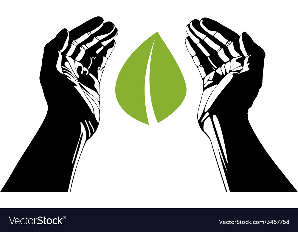 Hands with leaf symbol vector | Price: 1 Credit (USD $1)