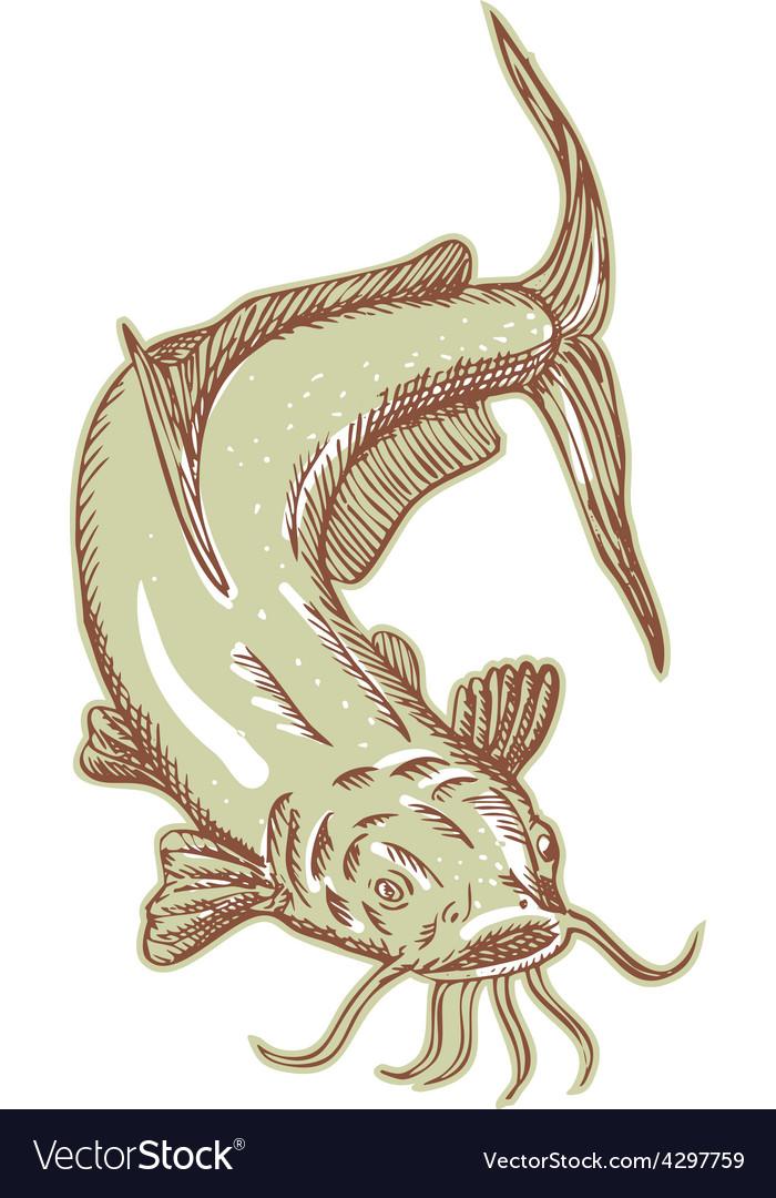 Catfish mud cat diving etching vector | Price: 1 Credit (USD $1)