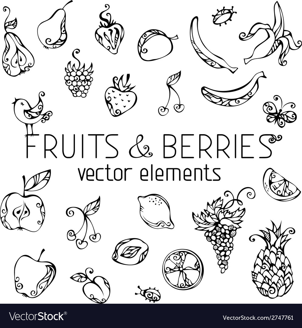Set of fruits and berries vector | Price: 1 Credit (USD $1)