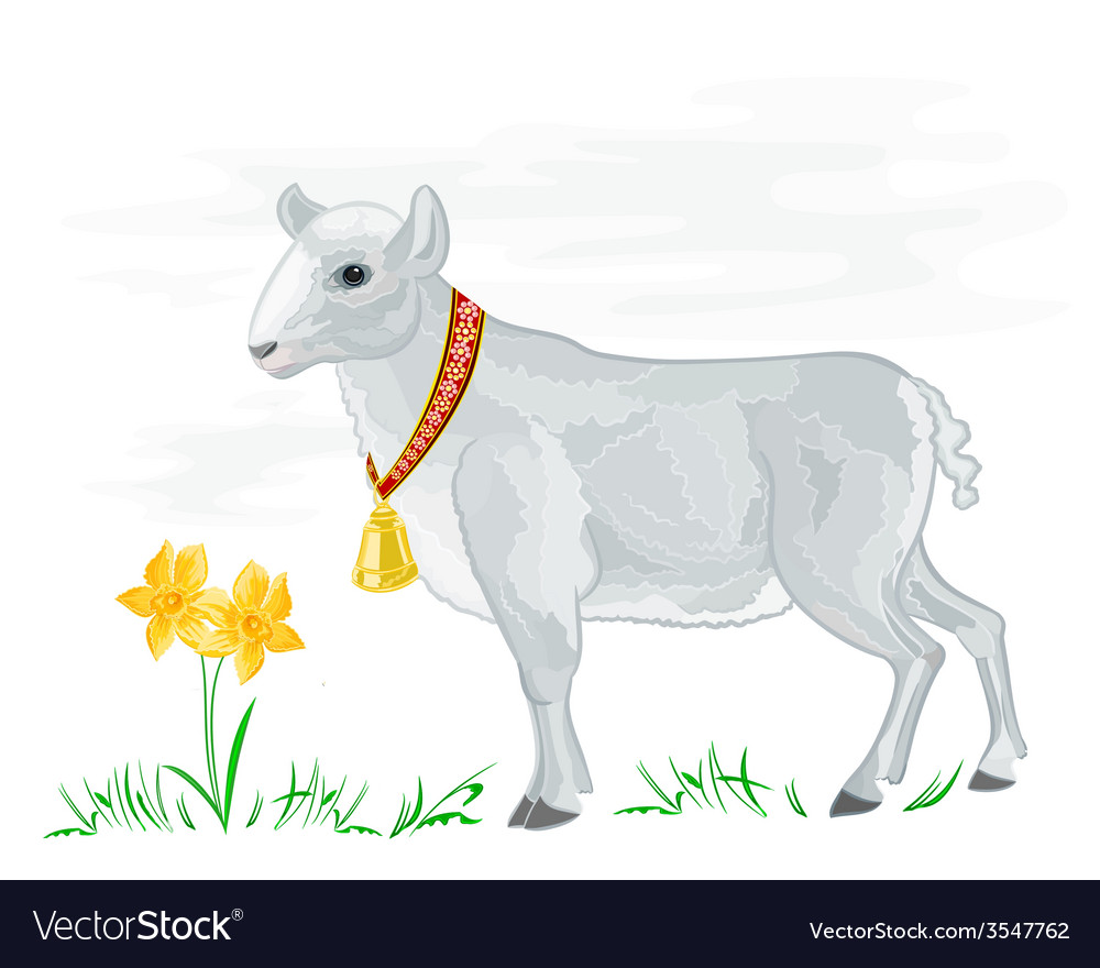 Easter lamb with daffodils vector | Price: 1 Credit (USD $1)