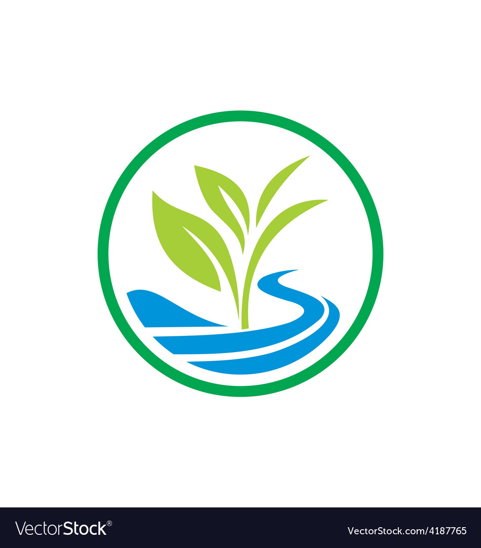 Plant seed water ecology logo vector