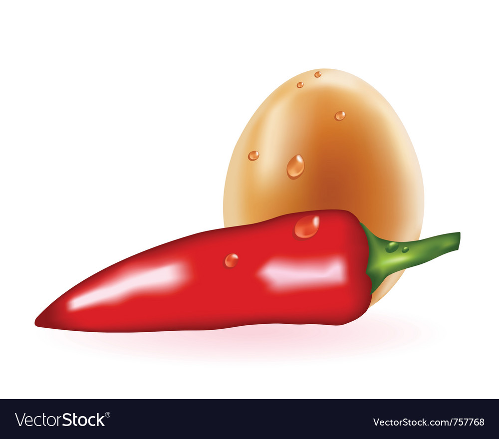 Red pepper and egg vector | Price: 1 Credit (USD $1)