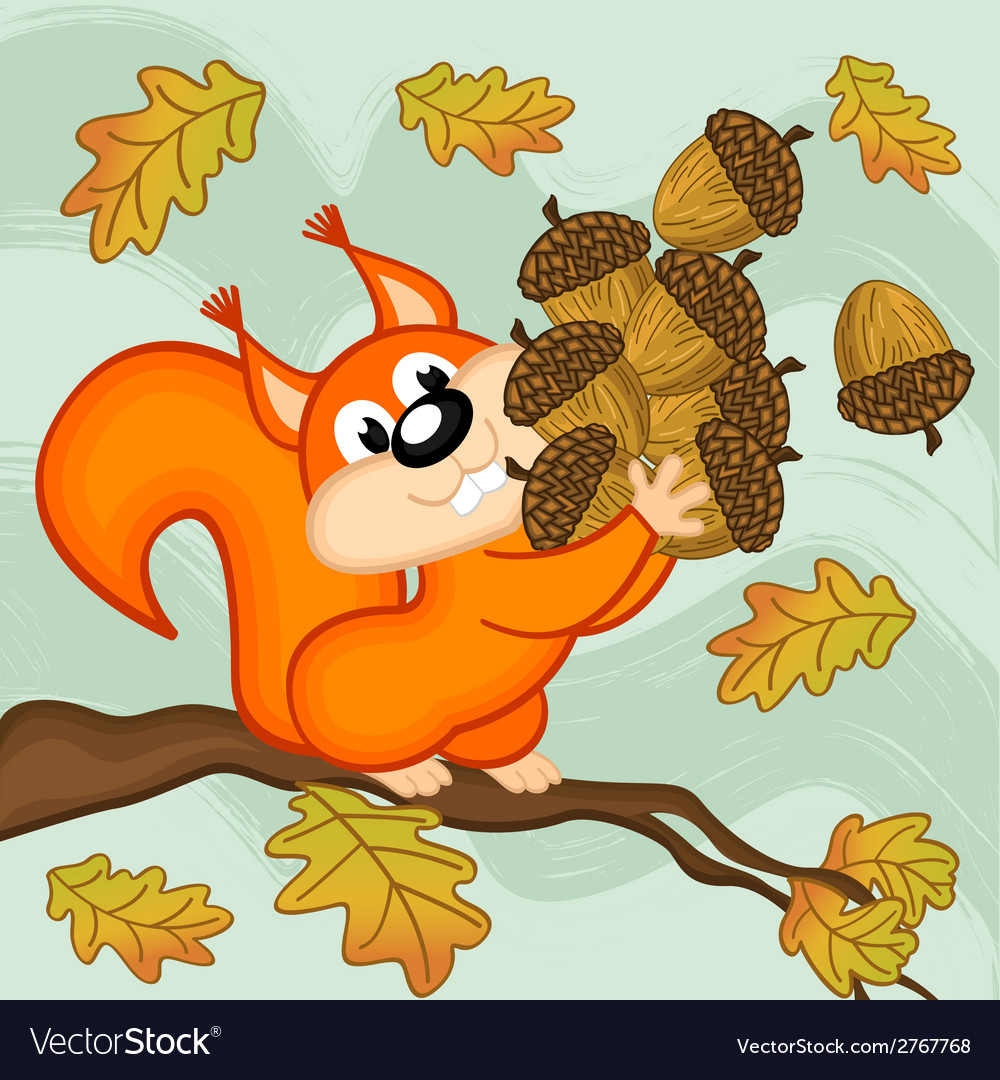 Squirrel gathers acorns vector | Price: 1 Credit (USD $1)