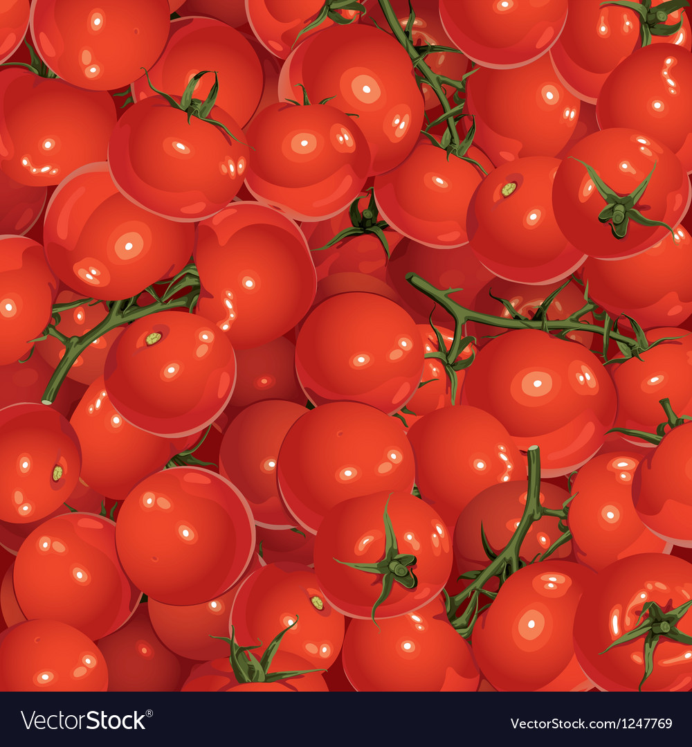 Background of tomatoes vector | Price: 1 Credit (USD $1)