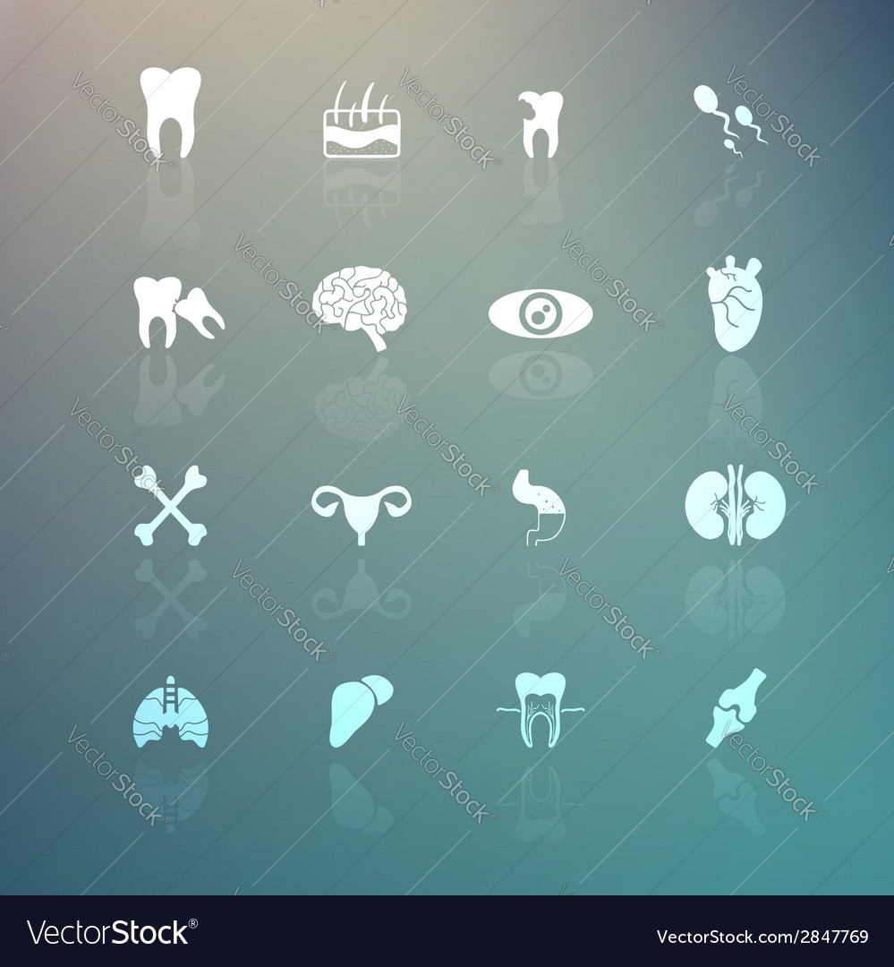 Body icons set on retina background vector | Price: 1 Credit (USD $1)