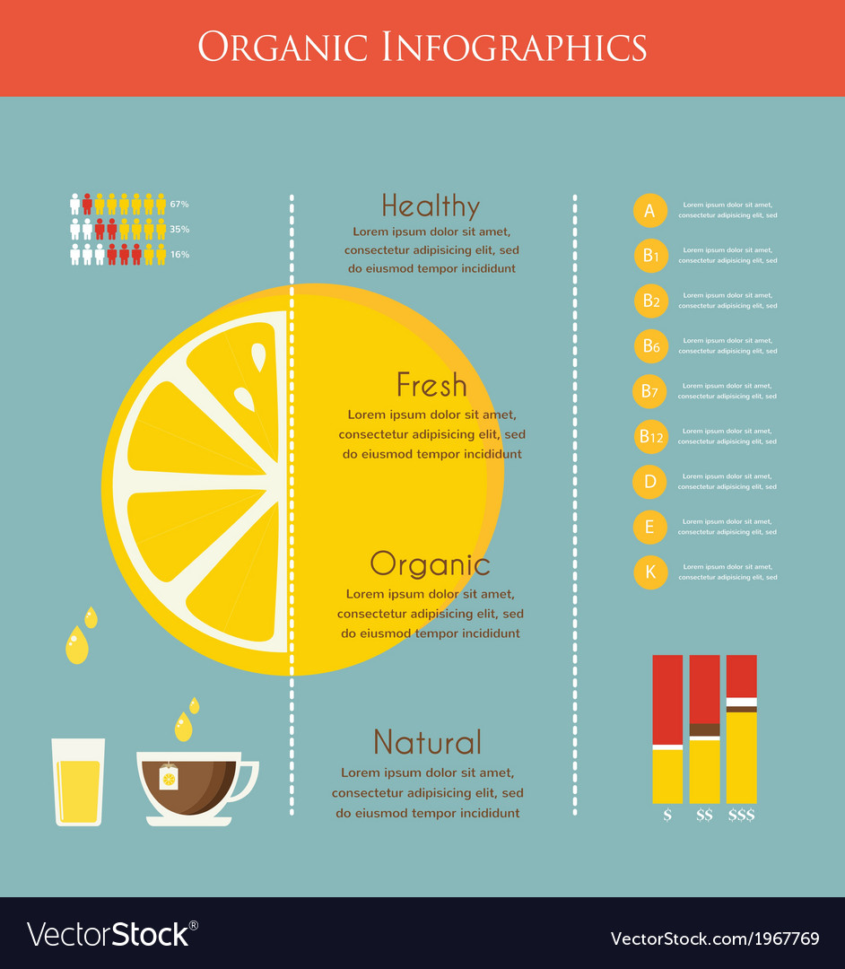 Lemon and organic infographics vector | Price: 1 Credit (USD $1)