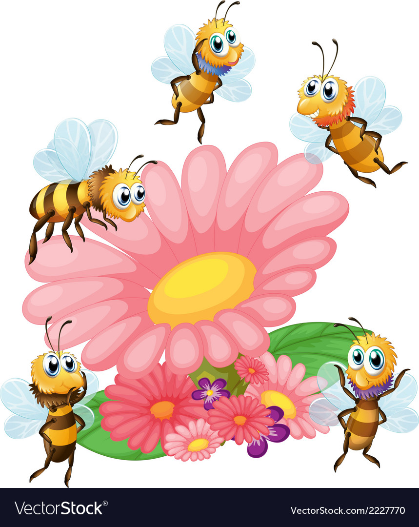 A big flower surrounded with bees vector | Price: 1 Credit (USD $1)