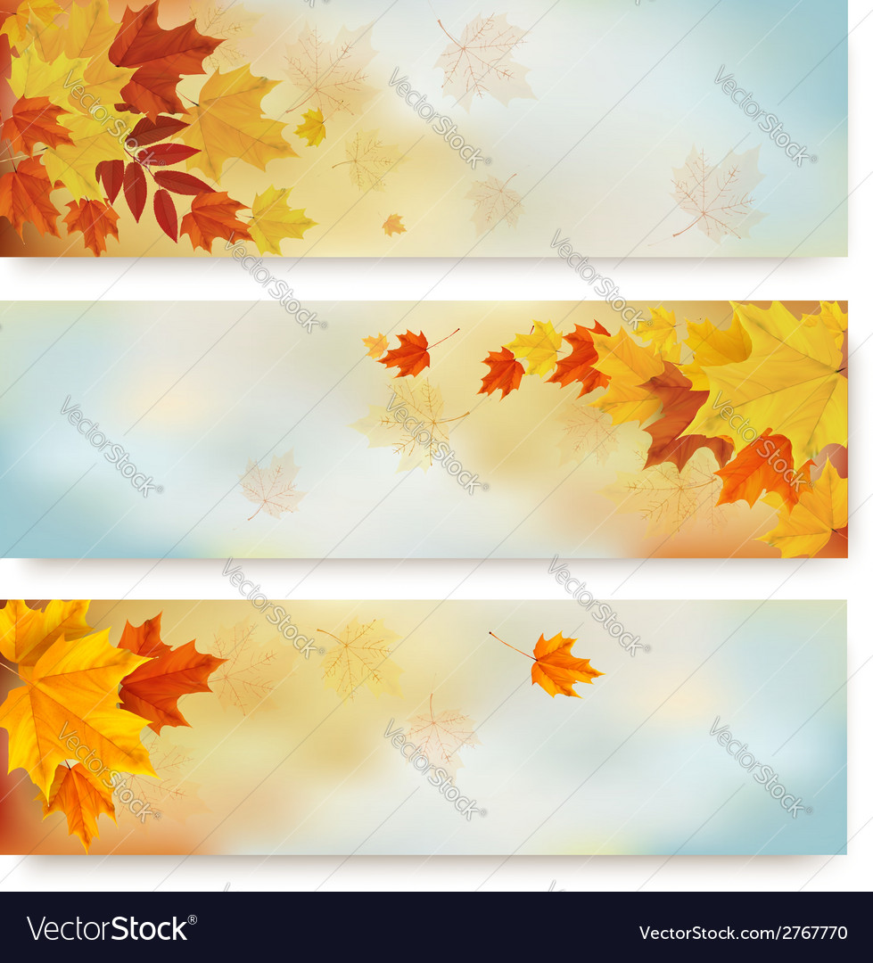 Three abstract autumn banners with color leaves vector | Price: 1 Credit (USD $1)