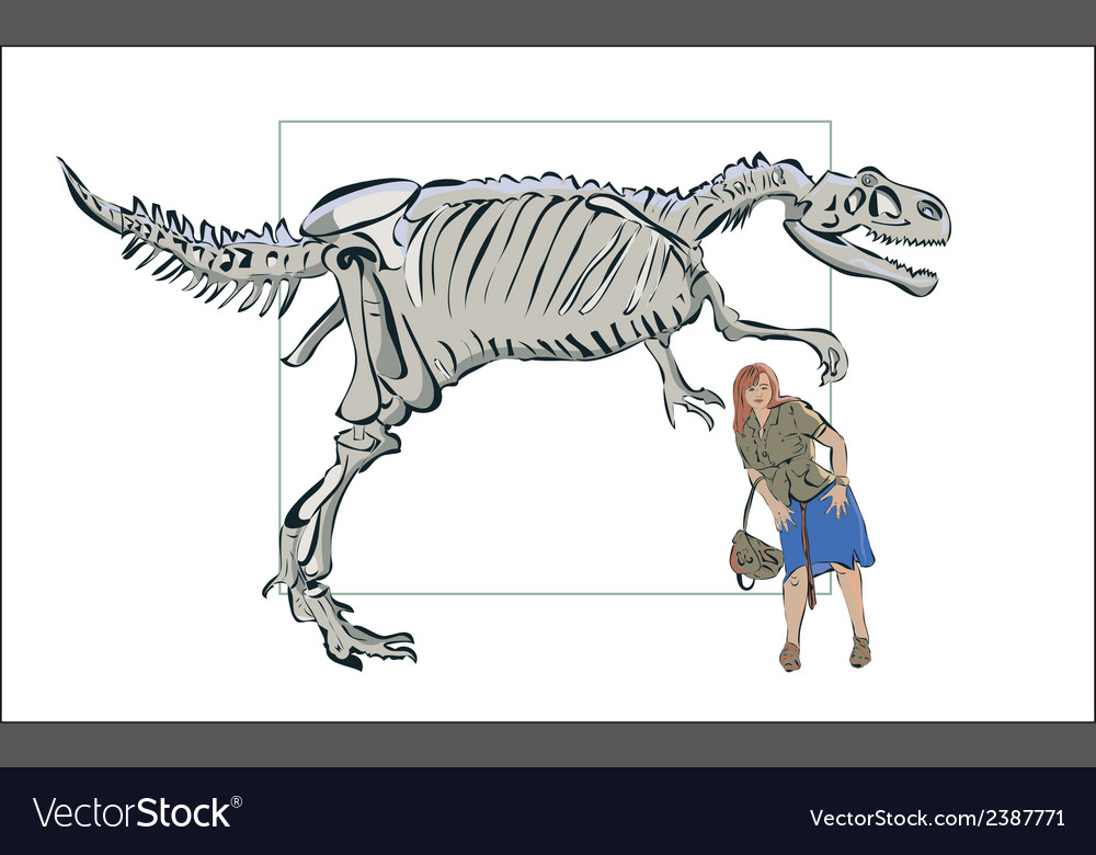 Compare man with a skeleton of a dinosaur vector | Price: 1 Credit (USD $1)