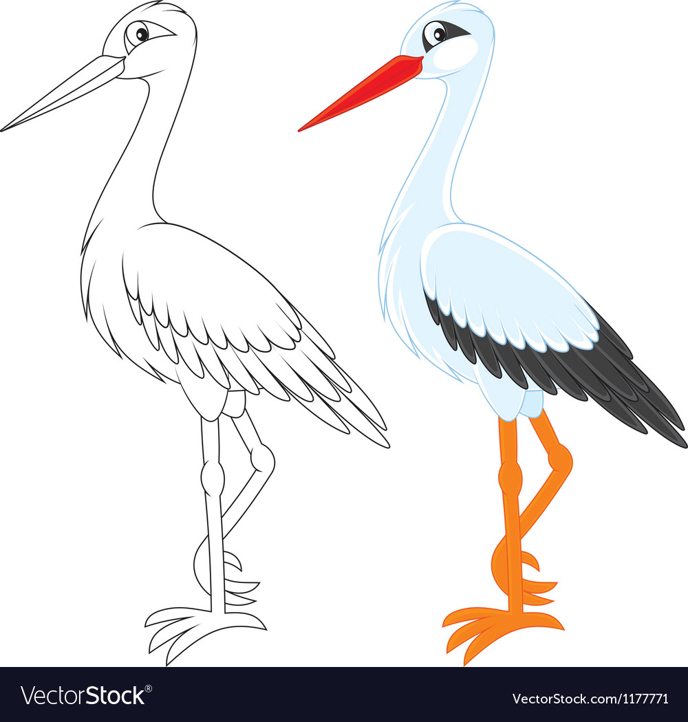 Stork vector | Price: 3 Credit (USD $3)