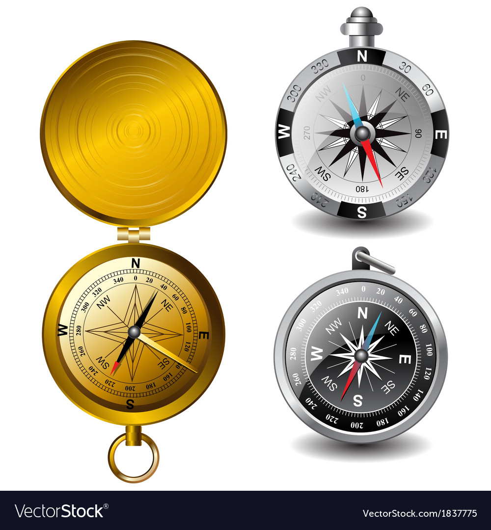 Detailed compasses vector | Price: 1 Credit (USD $1)