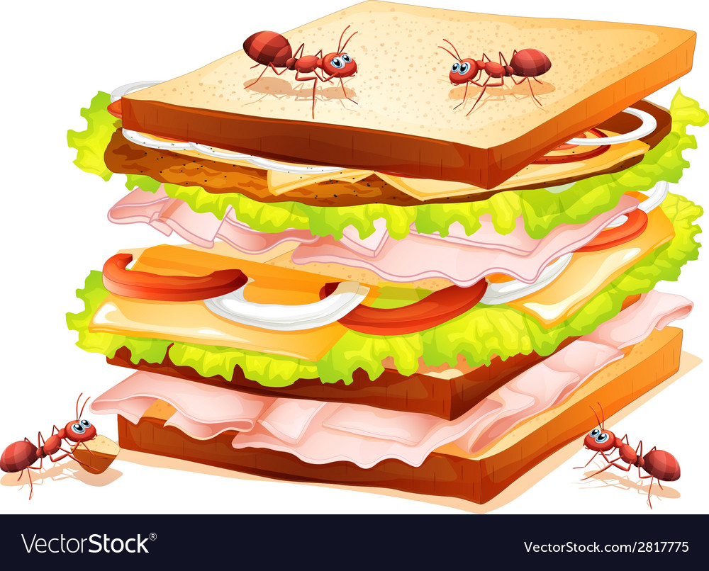 Sandwich and ants vector | Price: 1 Credit (USD $1)