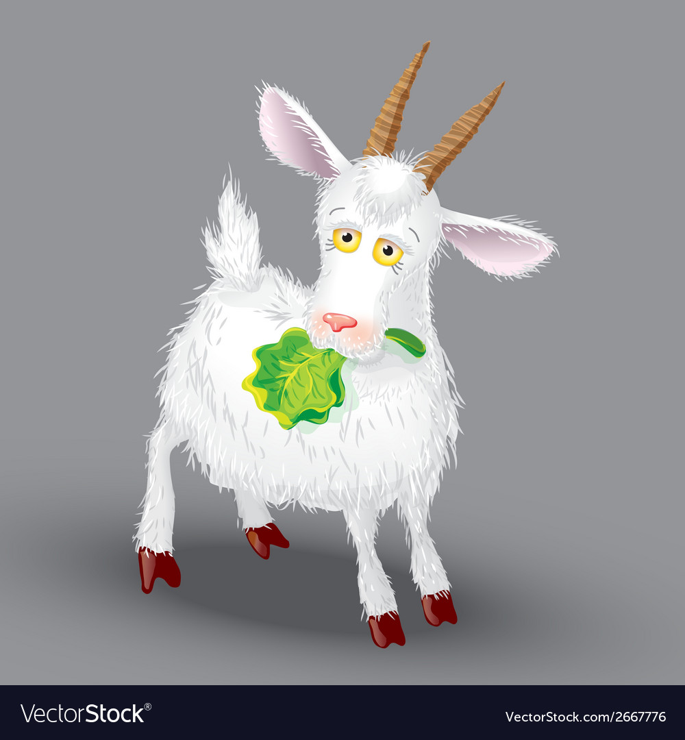 Goat on a gray background in the teeth of lettuce vector | Price: 1 Credit (USD $1)