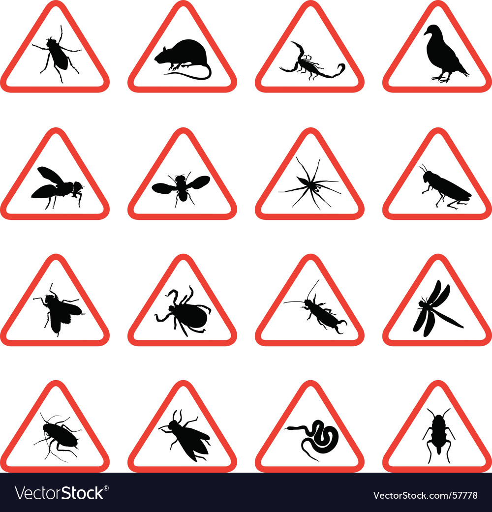 Pest warning signs vector | Price: 1 Credit (USD $1)
