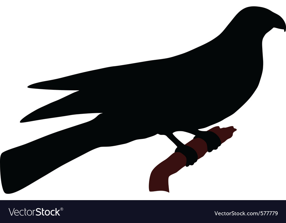 Falcon silhouette vector | Price: 1 Credit (USD $1)