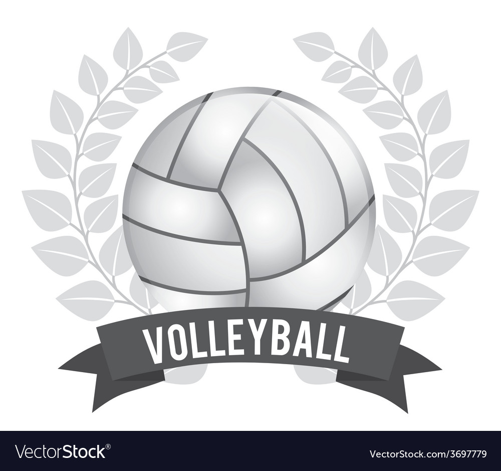 Volleyball ball vector   Price: 1 Credit (USD $1)