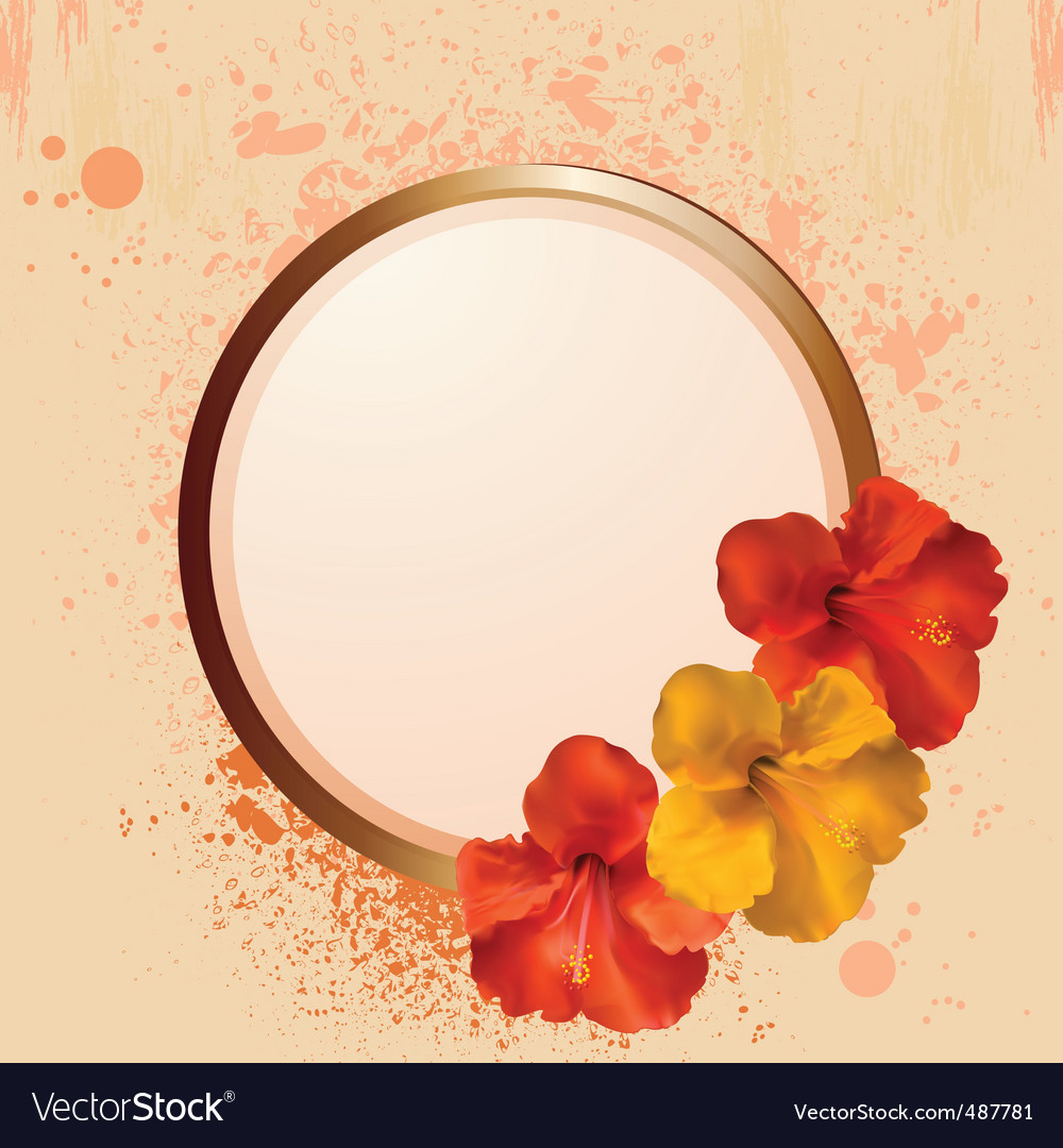 Hibiscus flowers and border vector | Price: 1 Credit (USD $1)