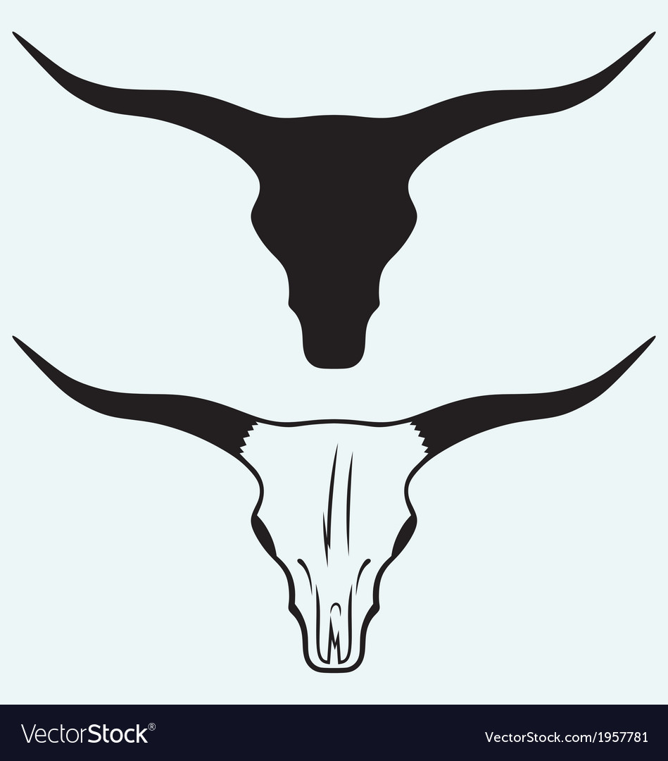 Skull of a bull vector | Price: 1 Credit (USD $1)