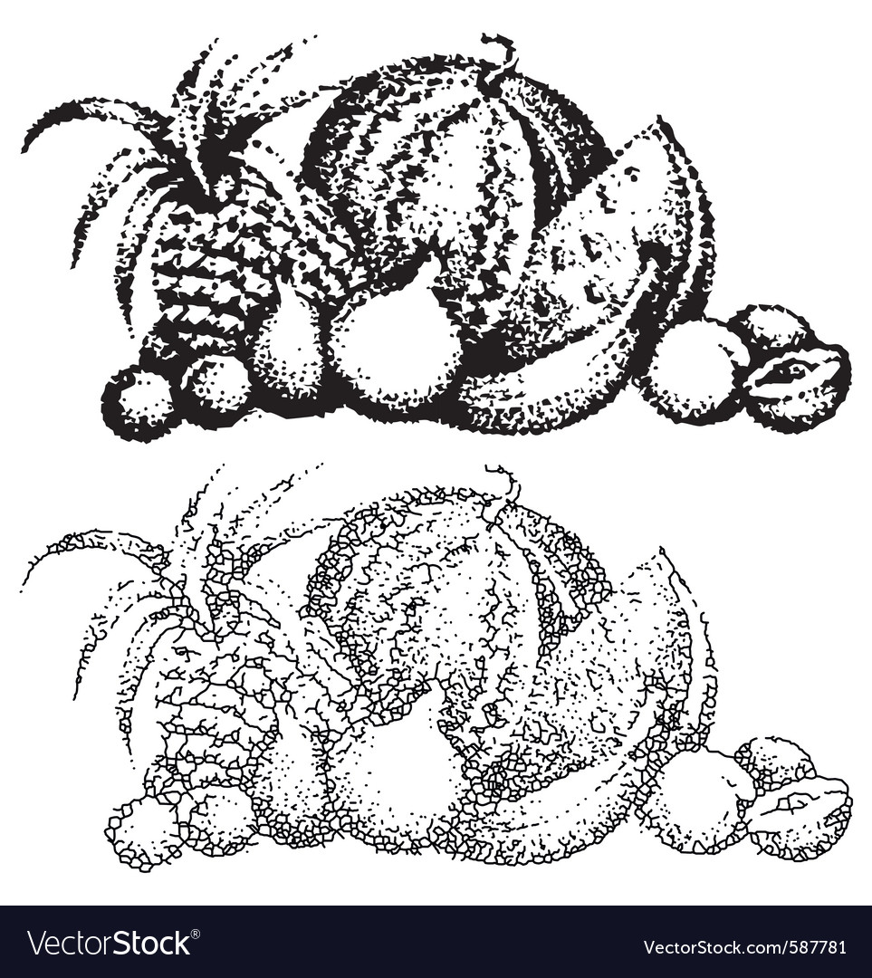 Texture images of fruit vector | Price: 1 Credit (USD $1)