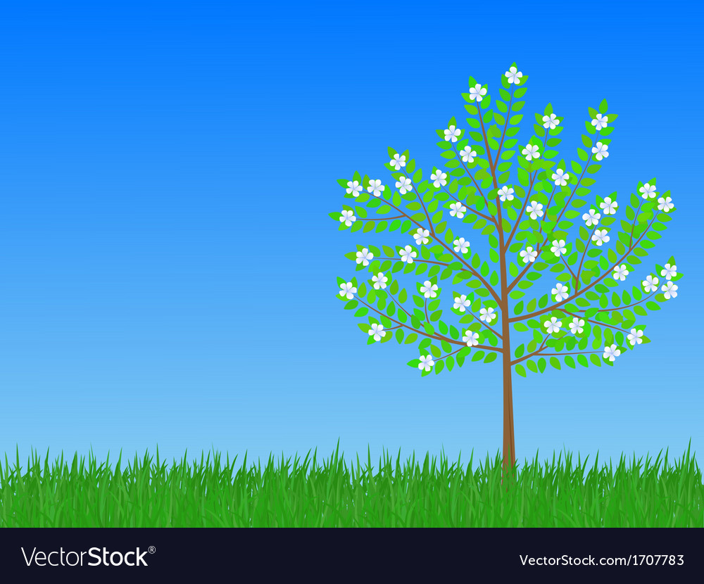 Spring tree vector | Price: 1 Credit (USD $1)