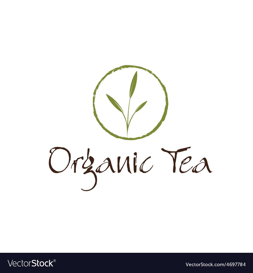 Leaves of organic tea vector | Price: 1 Credit (USD $1)