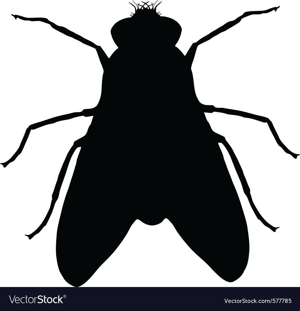 Fly silhouette vector | Price: 1 Credit (USD $1)