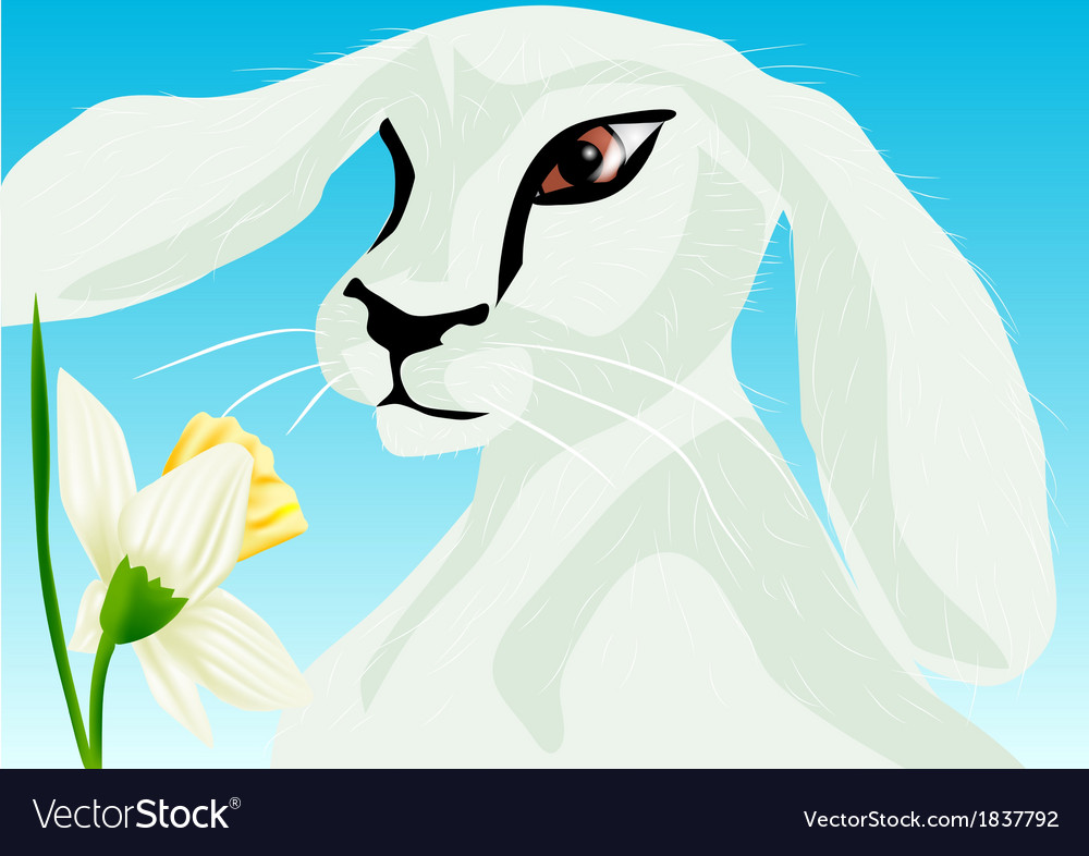 Animal springtime vector | Price: 1 Credit (USD $1)