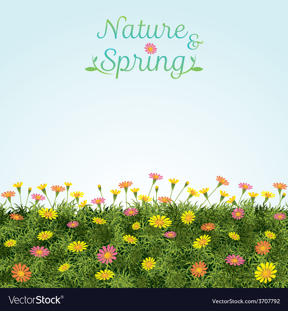 Flowers spring field season background vector | Price: 1 Credit (USD $1)