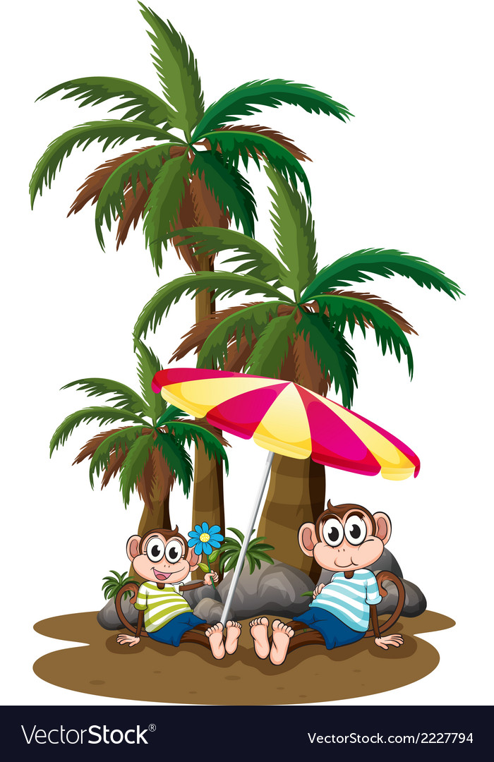 Monkeys under the coconut trees vector | Price: 1 Credit (USD $1)