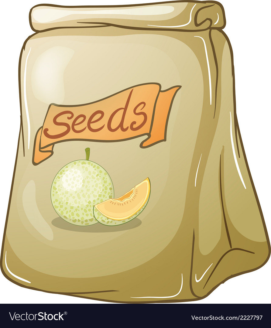 A pack of melon seeds vector | Price: 1 Credit (USD $1)