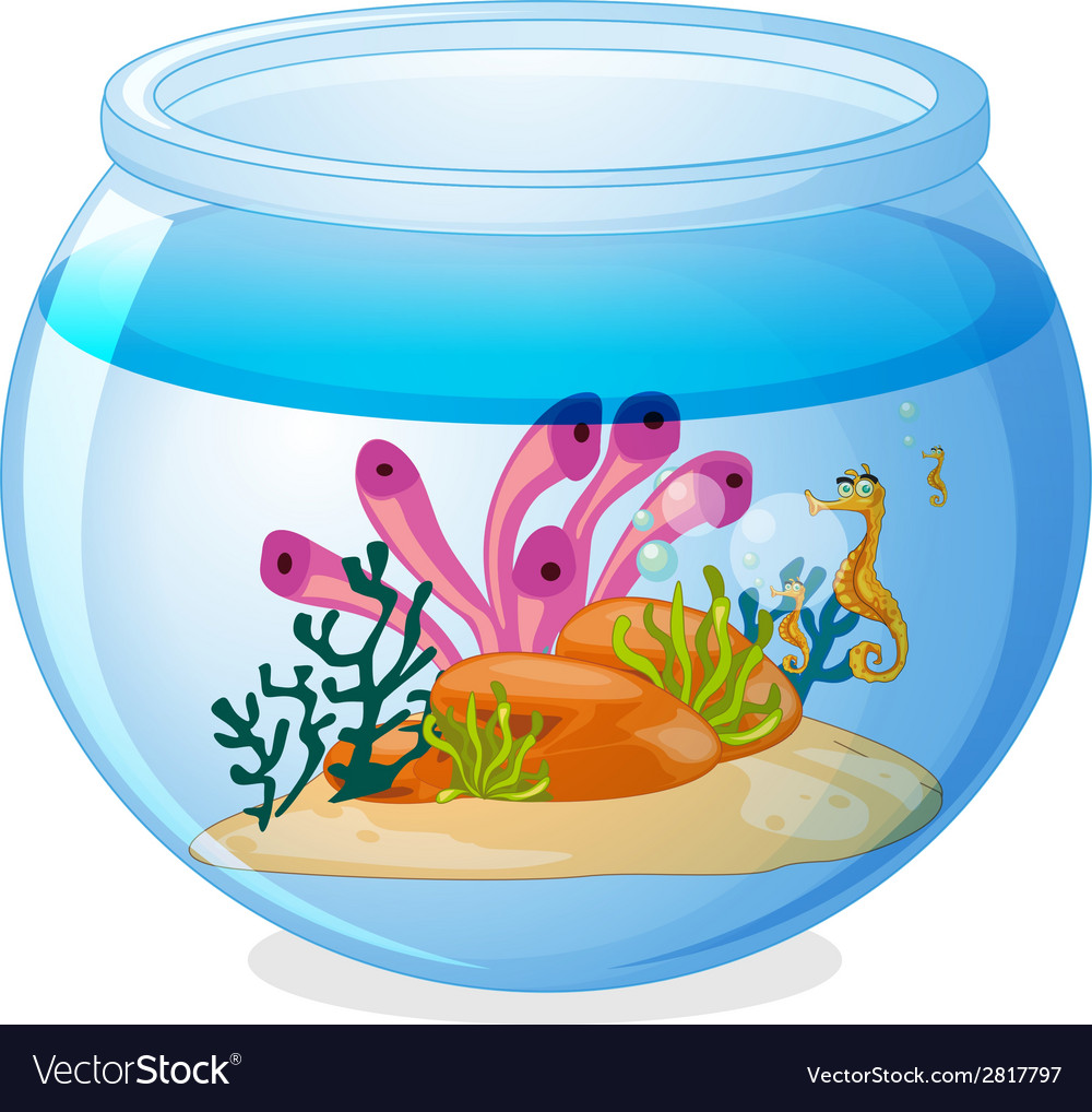 Fish tank vector | Price: 1 Credit (USD $1)