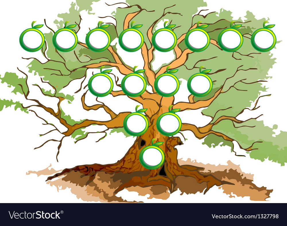 Tree diagram vector | Price: 1 Credit (USD $1)
