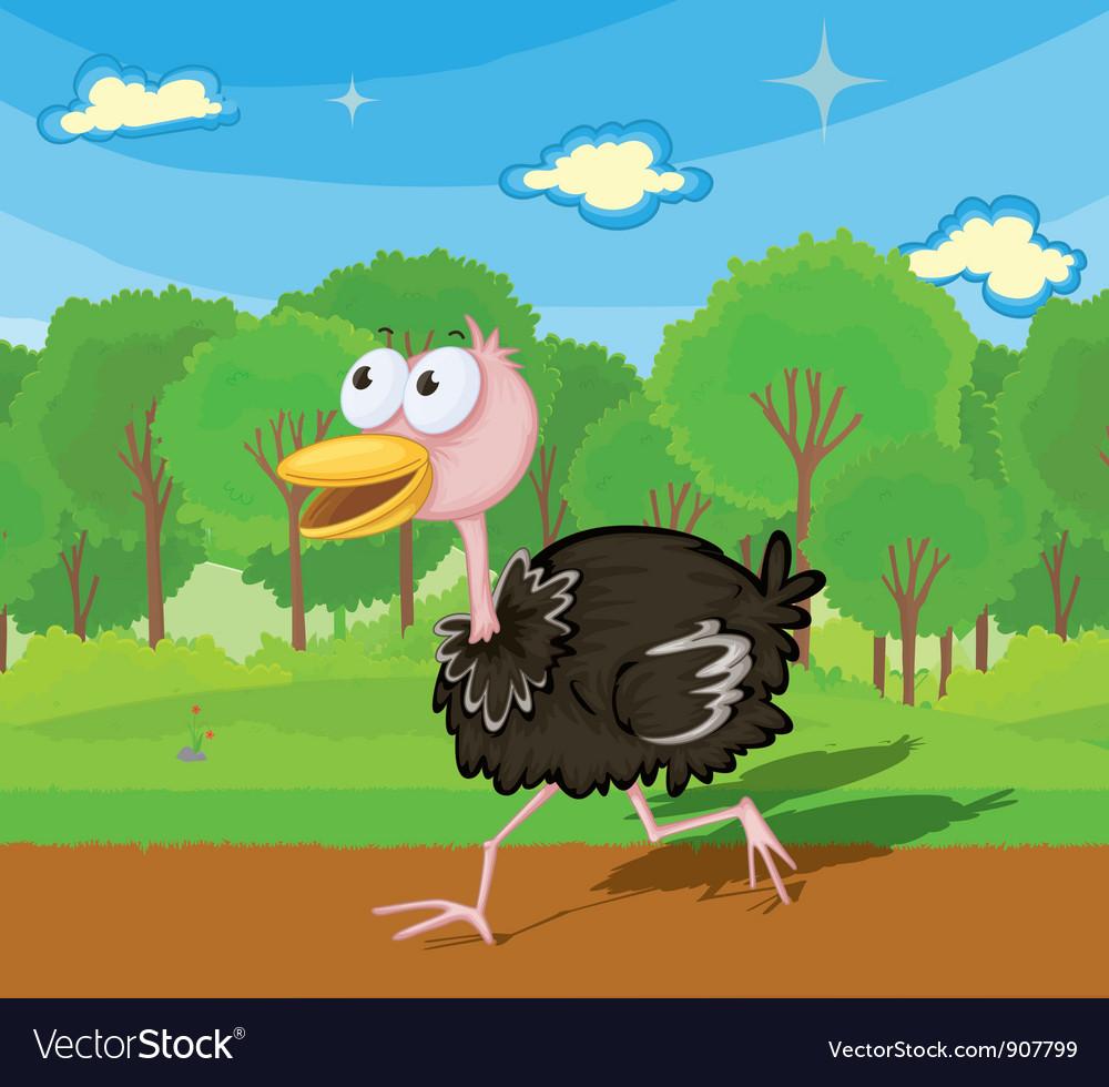 Ostrich running vector | Price: 3 Credit (USD $3)