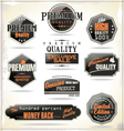 Set of retro vintage labels vector