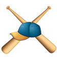 Hat and bats vector