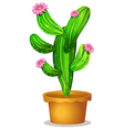 A cactus plant with pink flowers vector