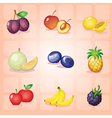 Various fruits vector