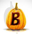 Halloween pumpkin b vector