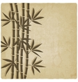 Bamboo old background vector